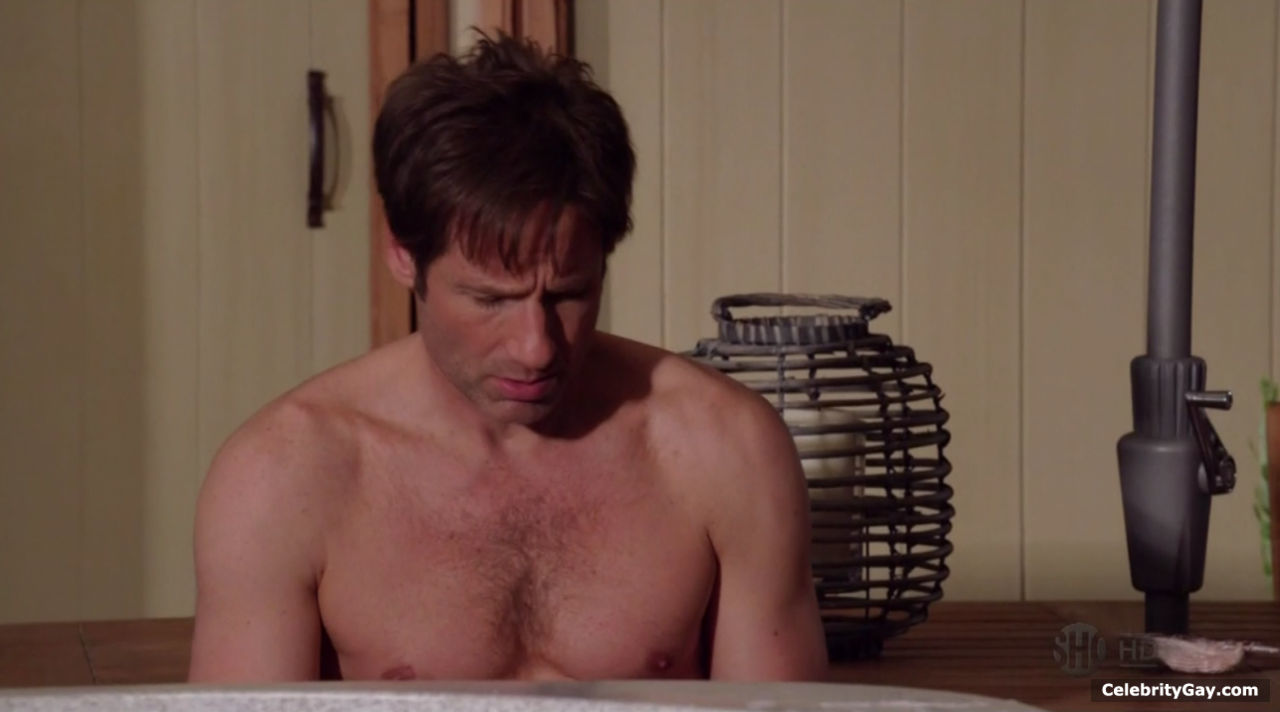 David Duchovny – The Male Fappening