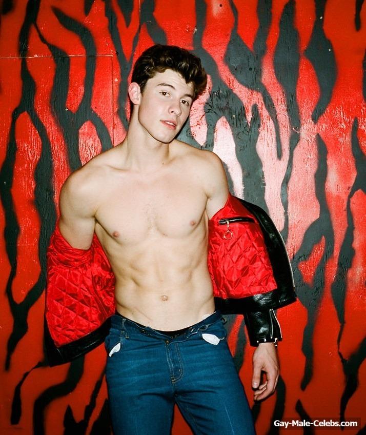 Shawn Mendes Sexy (13 Photos)