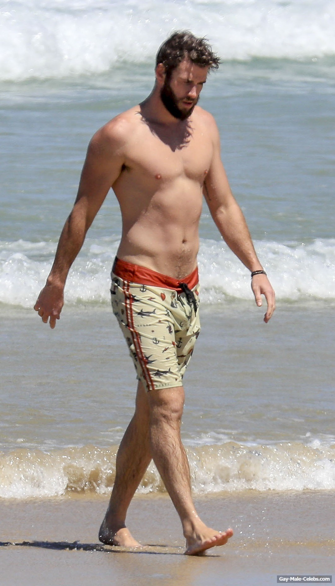 Liam Hemsworth - The Male Fappening